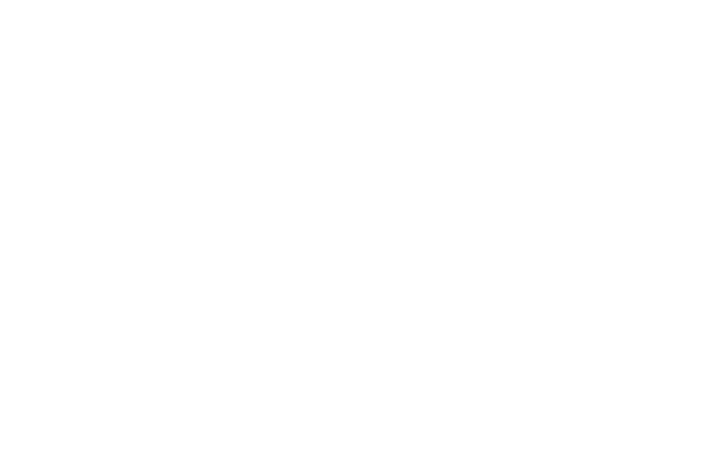 Luxus Life