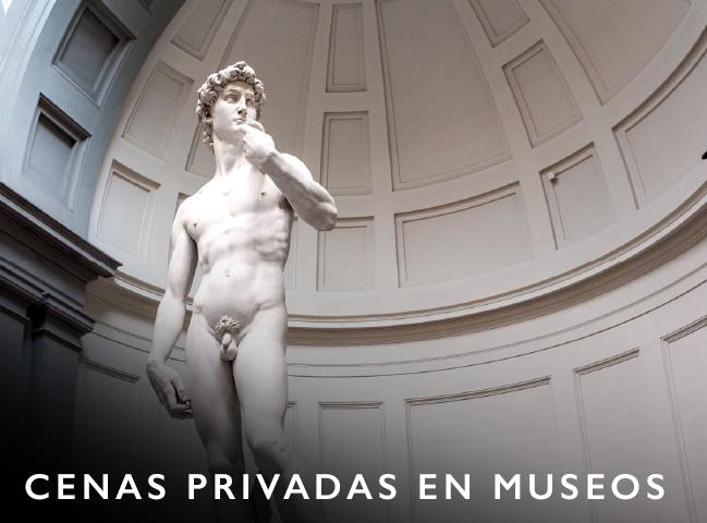 exposiciones de arte, galerias de arte, visitas a museos, entradas a museos, curadores de arte, acceso a museos, subastas, colecciones privadas