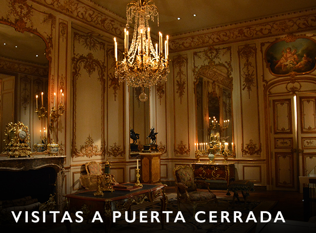 visitar palacios, visitar salas cerradas al publico, visitas privadas, entradas a palacios, visitas guiadas